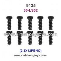 XinleHong Toys 9135 Parts Screw 30-LS02