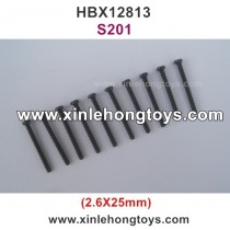 HaiBoXing HBX 12813 Parts Screw S201