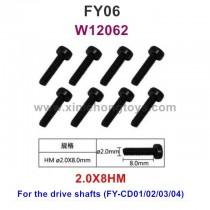 Feiyue FY06 Parts Screws W12062