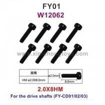 Feiyue FY01 Parts 2.0X8HM Hexagonal cup Head Machine Silk Screw W12062