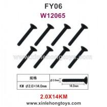 Feiyue FY06 Parts 2.0X14KM Hexagonal Flat Head Screws W12065