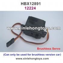 HBX 12891 Dune Thunder Parts Brushless Steering Servo 12224