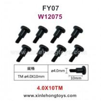Feiyue FY07 Parts 4.0X10TM Hexagonal T Head Screws W12075