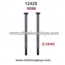 Wltoys 12428 Parts Screw 0096