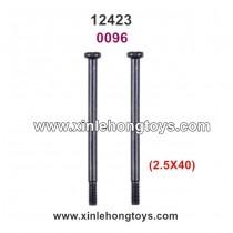 Wltoys 12423 Parts Screw 0096